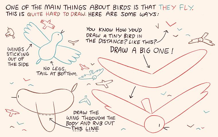 Luke Pearson's How to Draw... birds 8